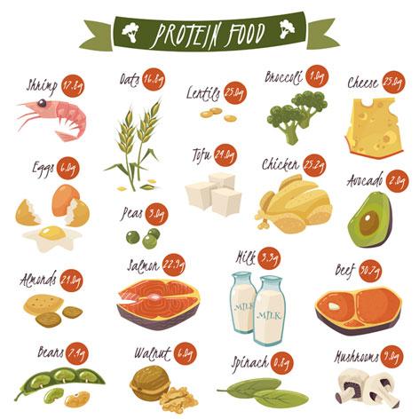 druhy proteinů